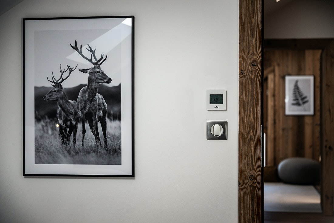 Reindeer photograph framed at Ruby luxury accommodation in Chamonix