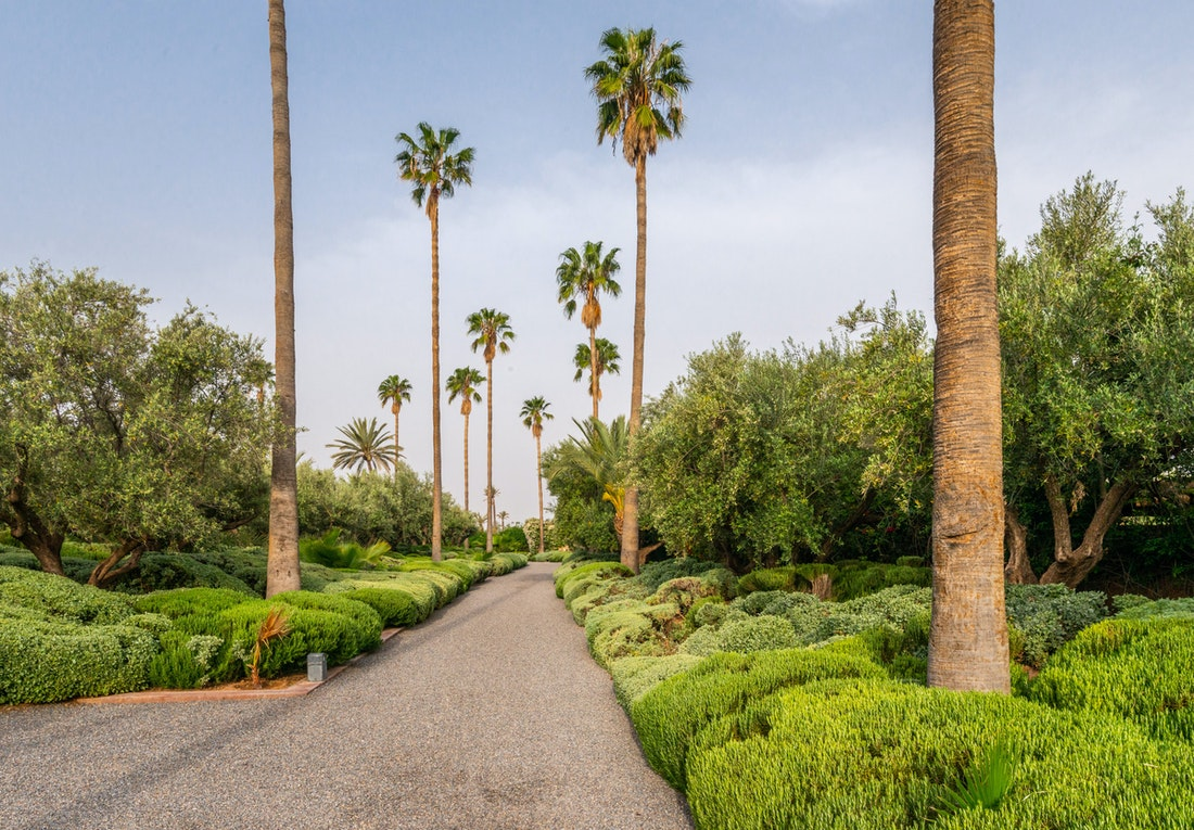 Entrance of Zagora private villa in Marrakech with palm trees
