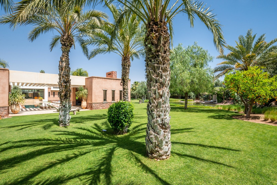 Private garden with palm trees and outdoor living room at Zagora private villa in Marrakech