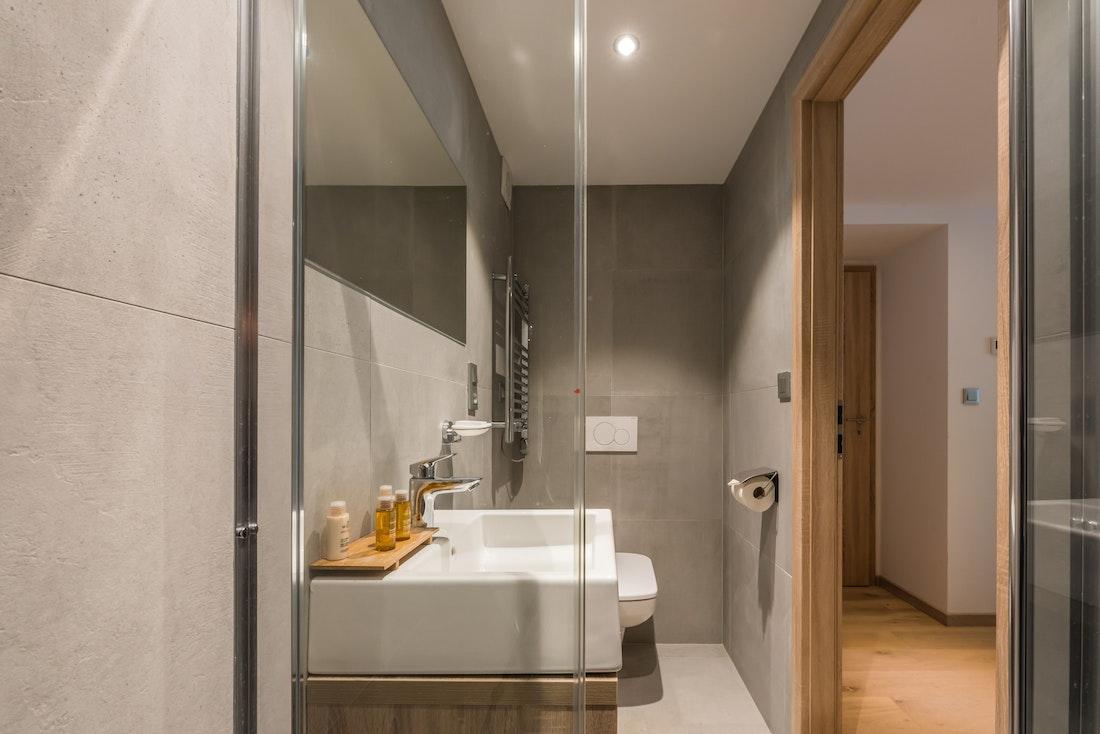Modern bathroom walk-in shower hotel services apartment Ipê Morzine