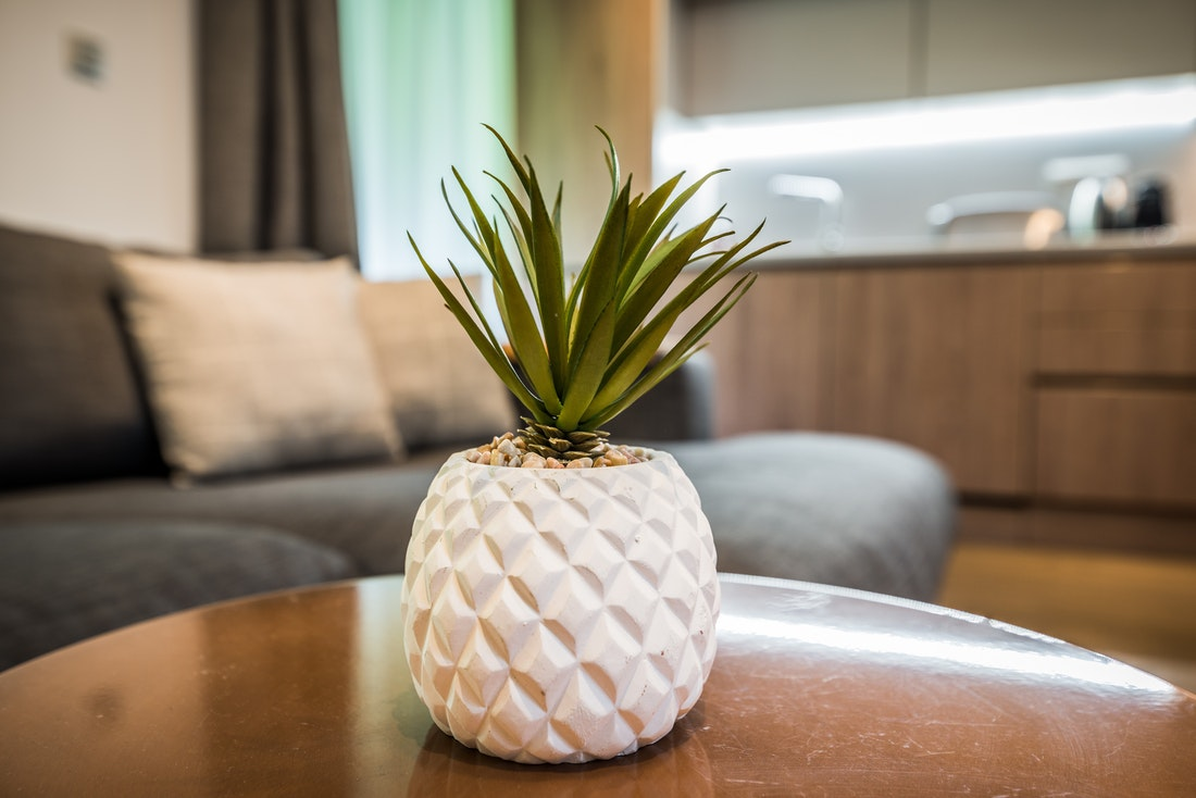 Pineapple-shaped plant pot